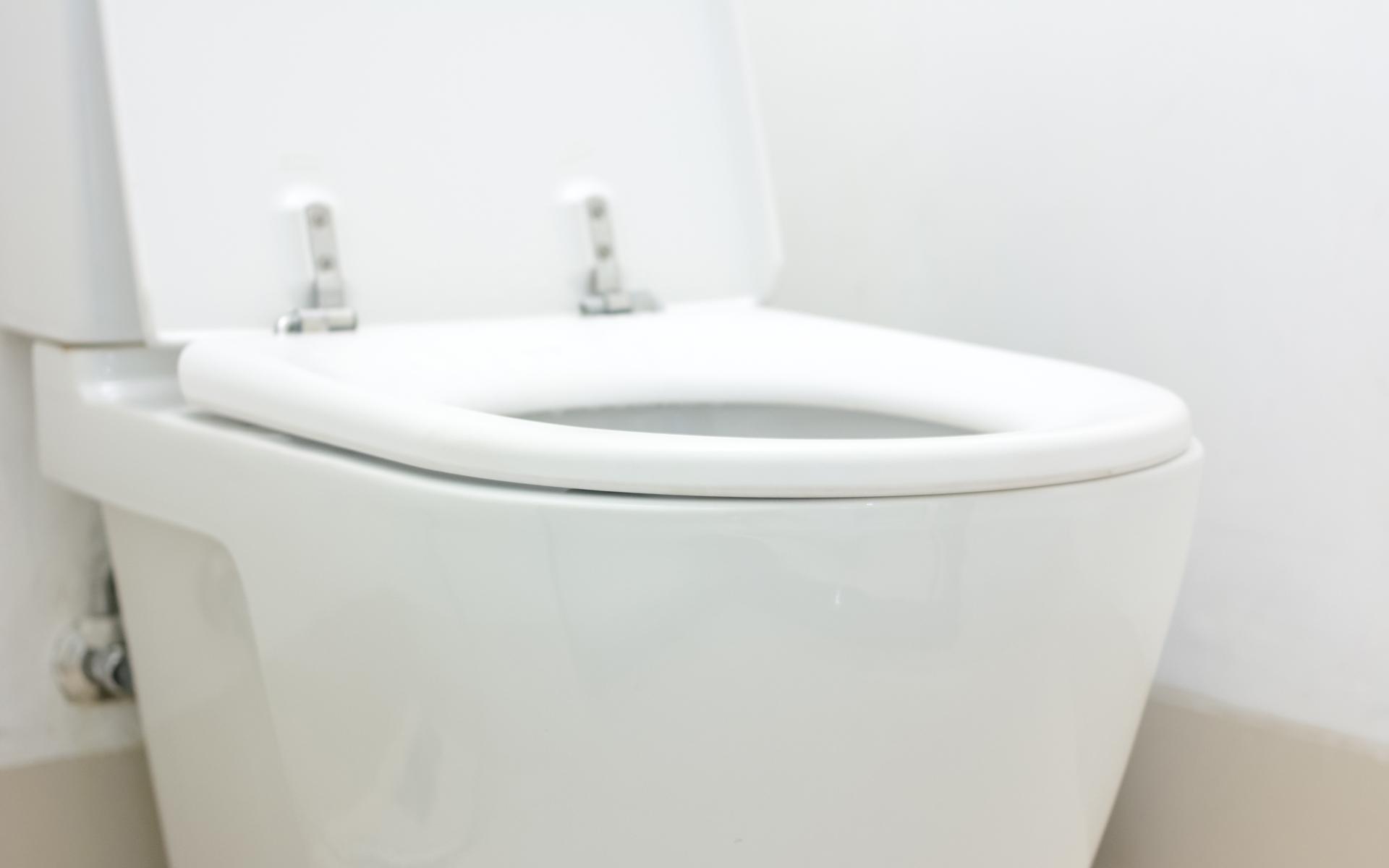 Delray Beach Toilet Repair